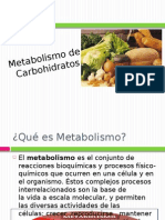 metabolismodeloscarbohidratos-110825025517-phpapp02
