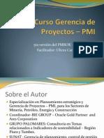 Curso Gerencia de Proyectos- COPEIQ UNAC 2013