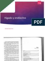 Características del hígado y Sistema Endócrino