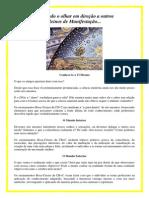 A Confraternidade.pdf
