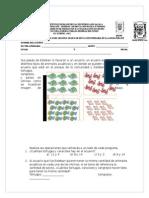 Diagnóstico de Matemáticas 2º Grado