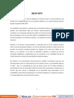Resumen, introduccion, marco teorico.pdf