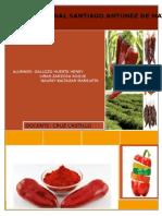 plan de exportacion de paprika a ee.uu