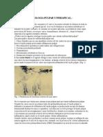 Apuntes de Patologia Pulpar y Periapical