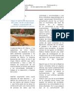 Noticia Ambiental