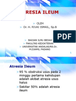 Atresia Ileum Dr Rivai