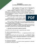 Instructiuni Completare Raport Audit