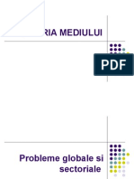 Ing Mediu 06.V4