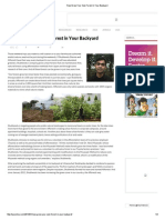 Now Grow Your Own Forest in Your Backyard.pdf