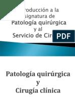 Introducci¢n a Patolog°a quir£rgica y Cirug°a
