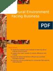 Cultural environment facing business