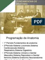 Noções Fundamentais de Anatomia