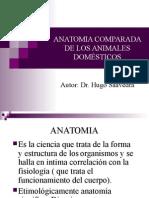 ANATOMIA COMPARADA DE LOS ANIMALES DOMETICOS