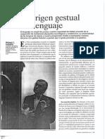 CORBALLIS, Michael C. - El Origen Gestual Del Lenguaje (MC, 224)