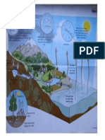 THE WATER CYCLE.pdf