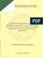 tesis del rol de la PGN.pdf
