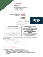 Opera+úii +či Procese metalurgice