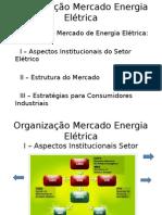2014826_232225_1.1+Organização+do+Mercado+de+Energia+Elétrica+2º.ppt