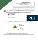 Minificha (1)