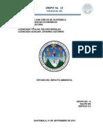 Grupo 13 ESTUDIO DEL IMPACTO AMBIENTAL.pdf
