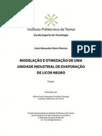 Modelação e Otimização dse Uma Unidade Industrial de Evaporação de Licor Negro - Carla Alexandra v (1)