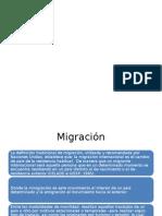 Diapositivas, Taller Familia y Migración