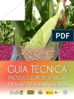 Guía Técnica Maíz light.pdf