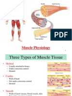2015+Muscle+Notes+from+Class-2