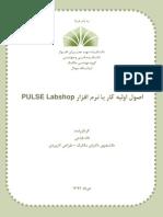 Basic PULSE Labshop Tutorial