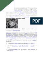 Historia Paella
