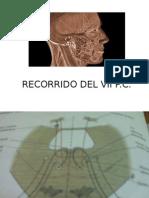 Recorrido Del Vii p