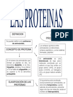 Las Proteínas, Mapa Mental