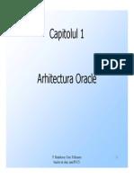 2.Arhitectura.oracle