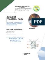 Guias de Practica Prot. Forestal i (1)
