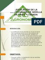Certificación de Semilla de Trigo y Cebada