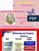 MARENCAR_AUDITORIA_FINANCIERA