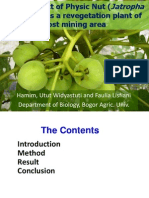 The Prospect of Physic Nut (Jatropha curcas L.) as a Revegetation Plant of Post Mining Area
