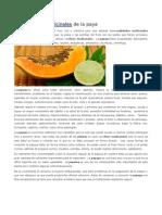Propiedades Medicinales de La Paya