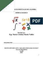 Conceptos Elementales de Algebra.pdf