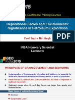 Ch1_Depositional Facies and Environments Significance in Petroleum Exploration