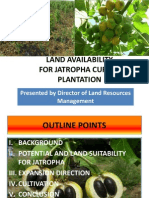 Land Availability for Jathropha Curcas Palantation