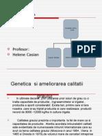 Genetica Si Ameliorarea Calitatii1