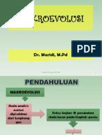 Bab 9. Makroevolusi Maridi p.biologi Fkip Uns 3