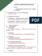 Biologia Dos Organismos Pdf