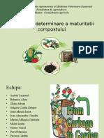 metode de determinare a maturitatii.pptx