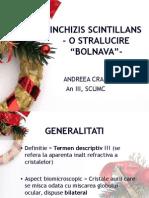 Sinchizis Scintillans Andreea CRAIU