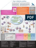 Type 1 Diabetes Mellitus POSTER