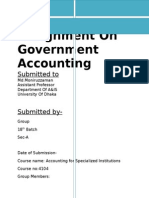 Assignment on Government Accounting