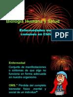 enfermedades comunes en chile