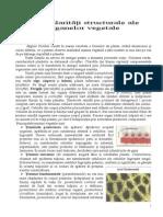 particularitati_structurale
